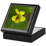 Cool Violet Keepsake Box
