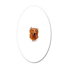 golden retriever portrait 20x12 Oval Wall Decal