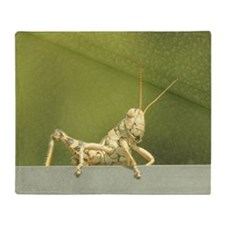 grasshopper 1 Throw Blanket