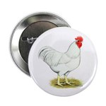 White Rooster Button