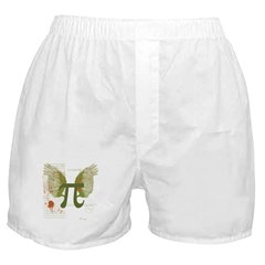 Winged Pi Boxer Shorts