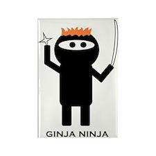 ginja ninja 1 Rectangle Magnet