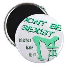 DONT BE SEXIST - BITCHES HATE THAT- TEAL Magnet