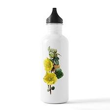Fremont_Card Water Bottle