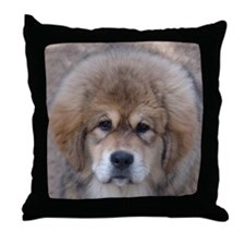 TM3 Throw Pillow