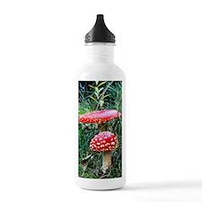 2fly Water Bottle