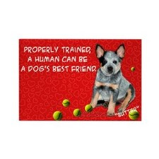 Funny Australian cattle dog christmas Rectangle Magnet