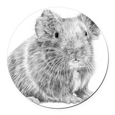 Guinea Pig / Cavy Pencil Round Car Magnet
