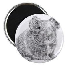 Guinea Pig / Cavy Pencil Magnet