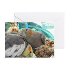 Cute Pet/ Cockatiels Greeting Cards