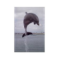 dolphin_jump_iso Rectangle Magnet