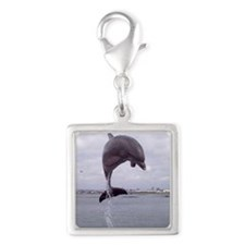 dolphin_jump_iso Silver Square Charm