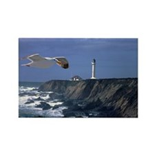 (10) lighthouse & seagull Rectangle Magnet