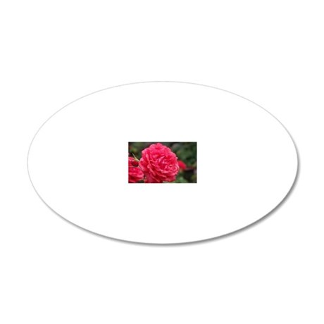 dewy rose 20x12 Oval Wall Decal