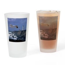 (14) lighthouse & seagull Drinking Glass