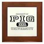 Pig University Framed Tile