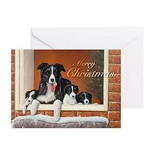 032 Border Collie  Puppies in Doorway Greeting Car