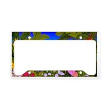 Image94 License Plate Holder