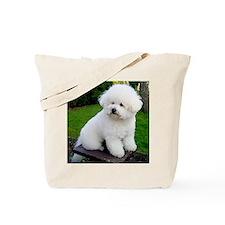 bichon-frise-0043 Tote Bag