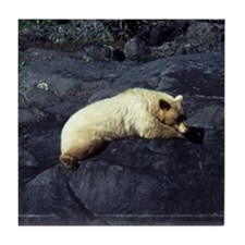 Spirit Bear Tile Coaster