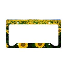 sunflowerfield License Plate Holder