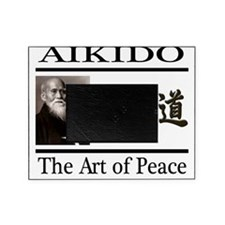 aikido 2 Picture Frame