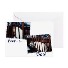Peek-a-boo Greeting Cards (Pk of 10)
