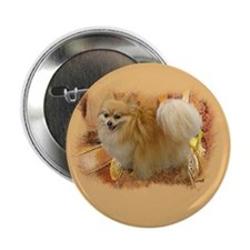 "Pomeranian plain.jpg 2.25"" Button (10 pack)"