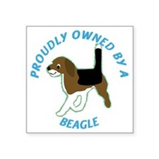 "Proudly Owned by a beagle Square Sticker 3"" x 3"""