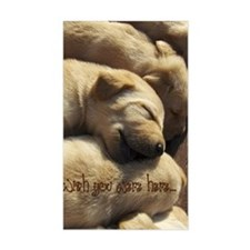 2-WishUWereHere_Labrador_Pups Decal