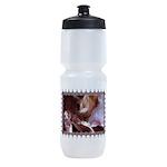 CAT-BALLET_TEE.png Sports Bottle