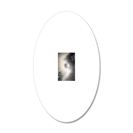 equilibrium 20x12 Oval Wall Decal