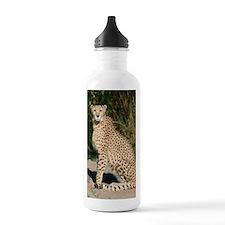 cheetah1 Water Bottle