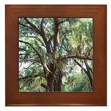 100_1536_0294 Framed Tile