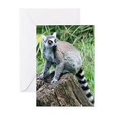 IMG_8322 Greeting Card