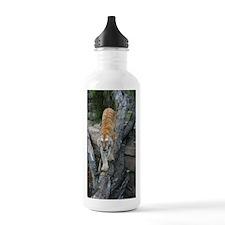 IMG_5245 Water Bottle