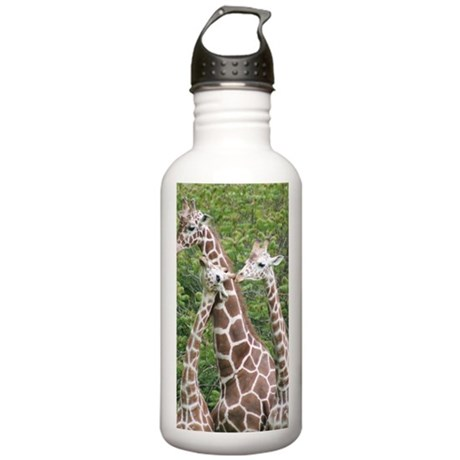 IMG_5556 Stainless Water Bottle 1.0L