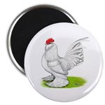 White d'Uccle Rooster 2.25