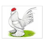 White d'Uccle Rooster Small Poster