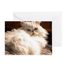 persianwht22 Greeting Card