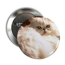 "persianwht22 2.25"" Button"