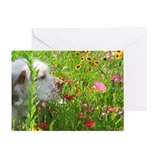 tilly72509_015 Greeting Card