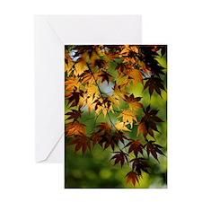 Japanese Garden Greeting Card