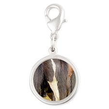Icelandic Horses Silver Round Charm
