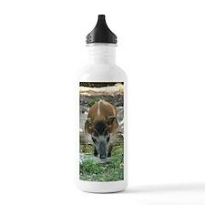 IMG_2162 Water Bottle