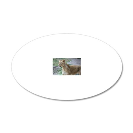 IMG_5398 20x12 Oval Wall Decal