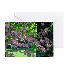Pink Dogwood Note Card ( note card s Greeting Card