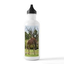 IMG_2764 Water Bottle