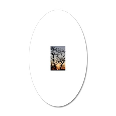 P8110880 20x12 Oval Wall Decal