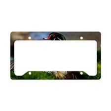 (1) Wood Duck Wing License Plate Holder